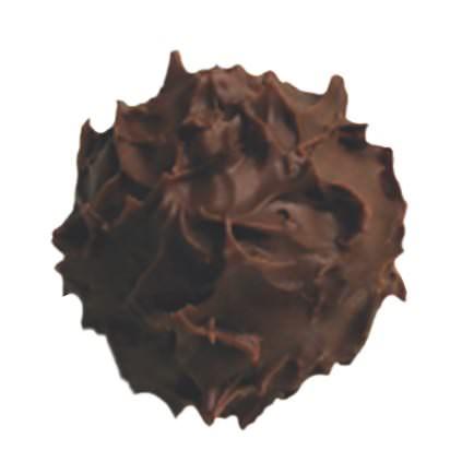 Maracaibo Truffle